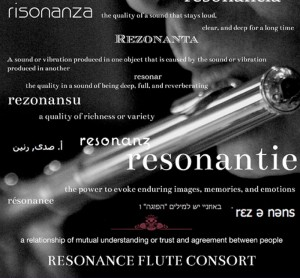 Resonantie. A sound or vibration produced in one object that is caused by gthe sound or vibration produced in another.